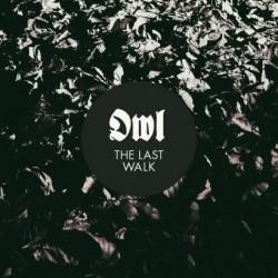 owl-thelastwalk