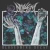 Noisem-Blossoming-Decay
