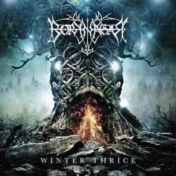 borknagar-winterthrice