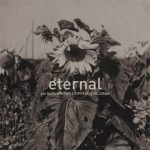 aafcc-eternal