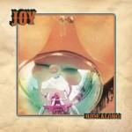 joy-ridealong