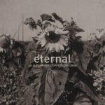 aafcc-eternal